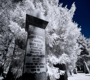 Toronto Deer Park in Winter